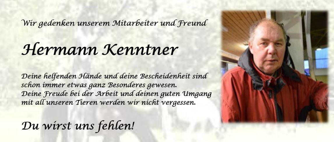 Hermann_Trauer